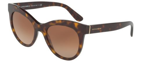 Dolce & Gabbana DG4311 Havana Gold/brown Shaded (502/13)