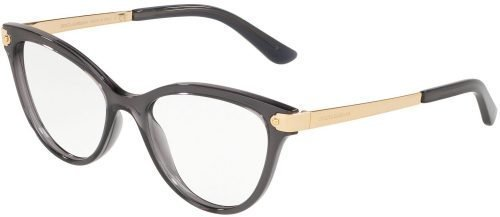 Dolce & Gabbana WELCOME DG5042 Transparent Grey/Gold (504)