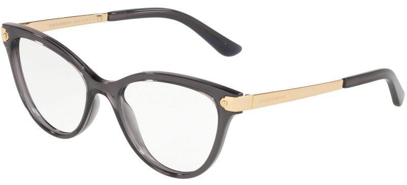 Dolce & Gabbana WELCOME DG5042 Transparent Grey/Gold (504)